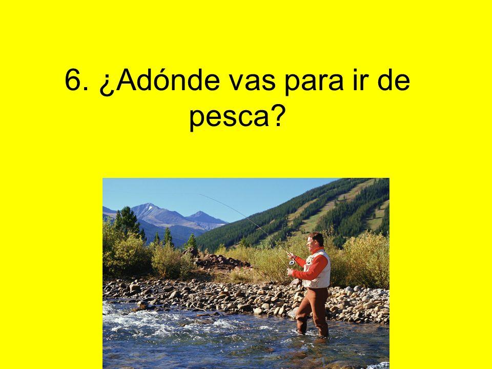 6. ¿Adónde vas para ir de pesca