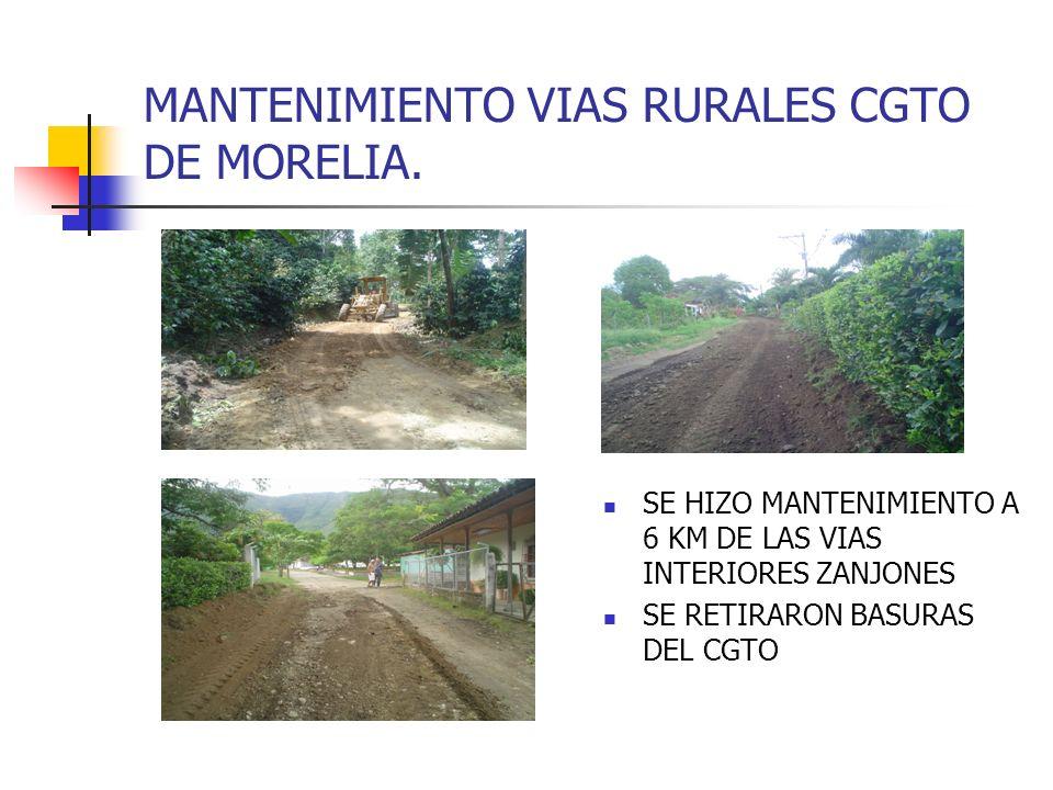 MANTENIMIENTO VIAS RURALES CGTO DE MORELIA.