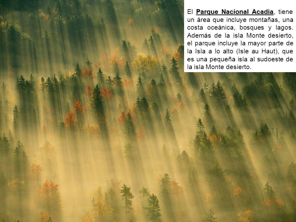 El Parque Nacional Acadia, tiene un área que incluye montañas, una costa oceánica, bosques y lagos.