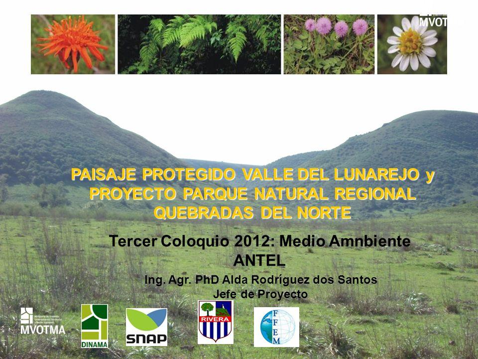 Tercer Coloquio 2012: Medio Amnbiente ANTEL
