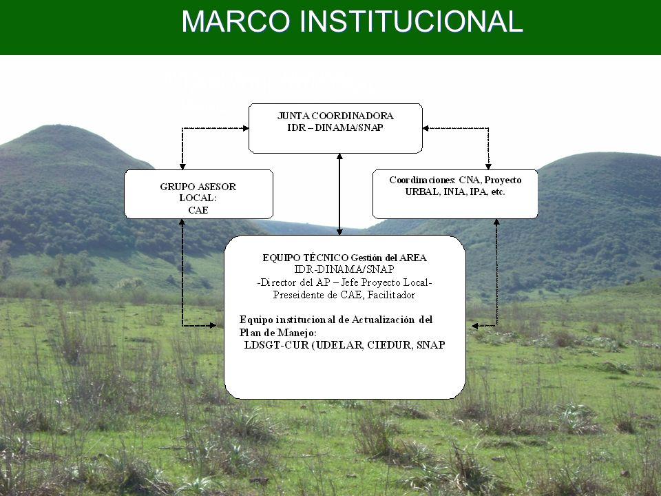 MARCO INSTITUCIONAL MARCO INSTITUCIONAL MARCO INSTITUCIONAL