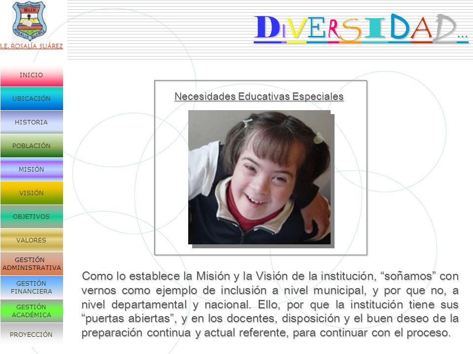 DIVERSIDAD… Necesidades Educativas Especiales.