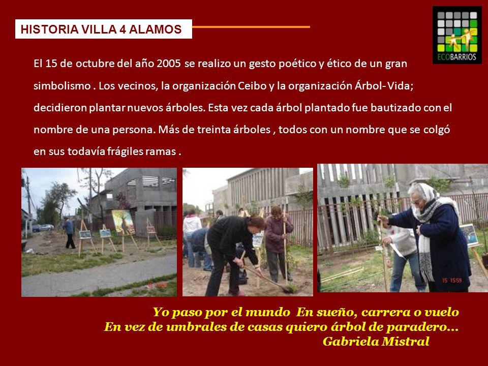 HISTORIA VILLA 4 ALAMOS 2005.