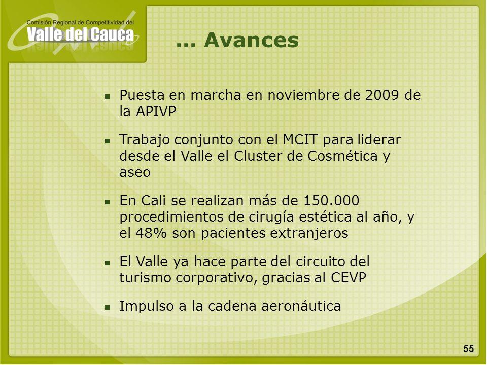 … Avances Puesta en marcha en noviembre de 2009 de la APIVP