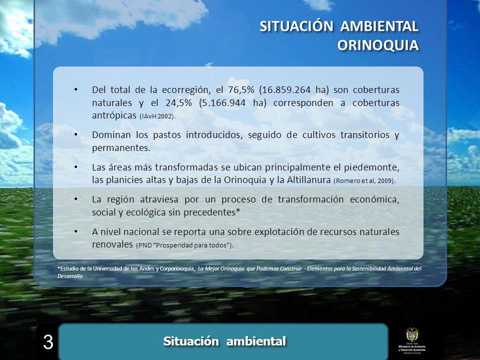 3 SITUACIÓN AMBIENTAL ORINOQUIA Situación ambiental