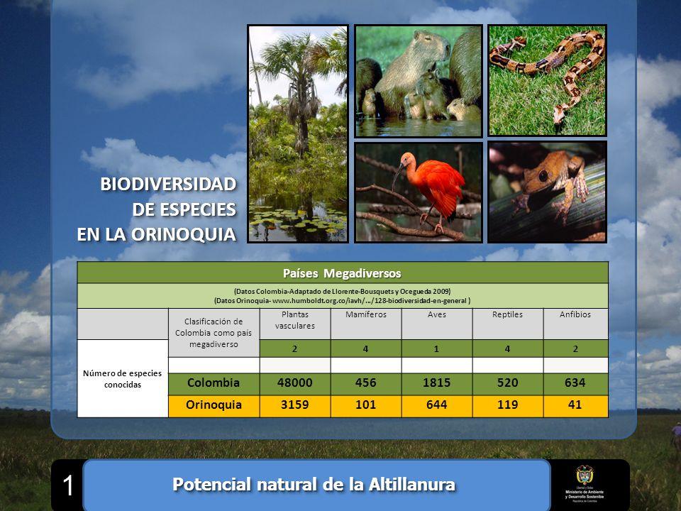 1 BIODIVERSIDAD DE ESPECIES EN LA ORINOQUIA