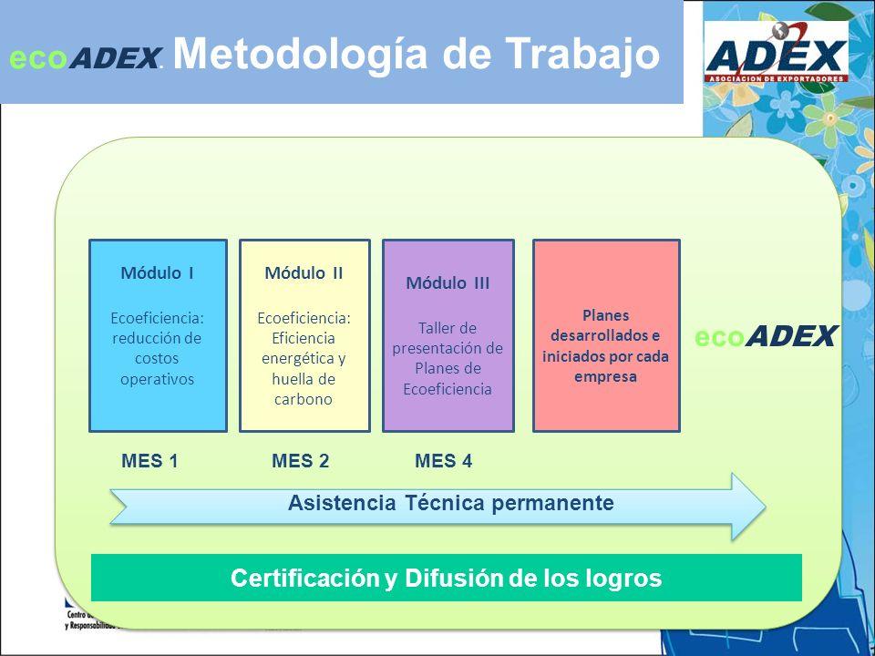 ecoADEX. Metodología de Trabajo