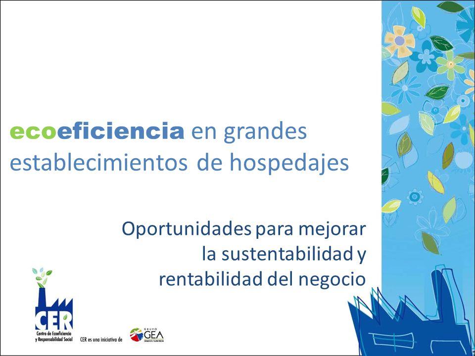 ecoeficiencia en grandes establecimientos de hospedajes
