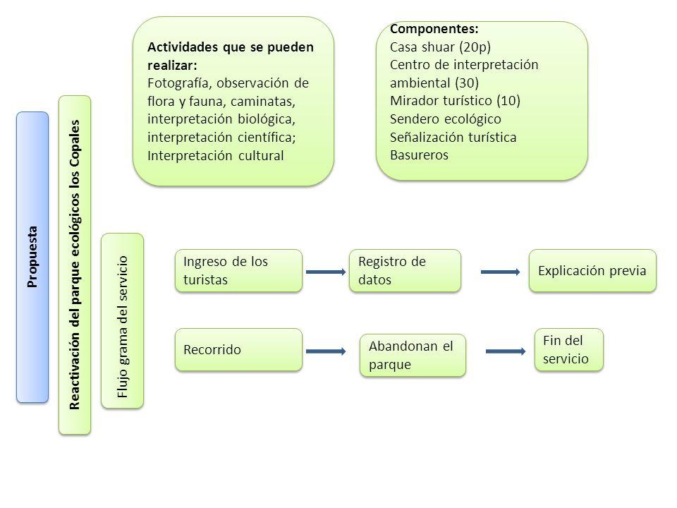 Reactivación del parque ecológicos los Copales