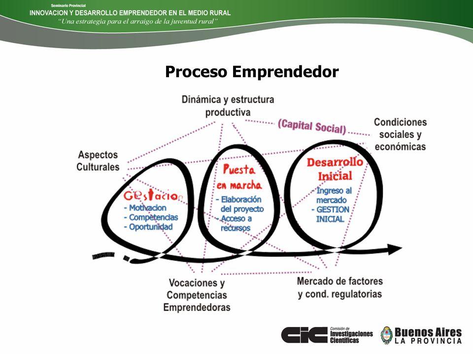 Proceso Emprendedor