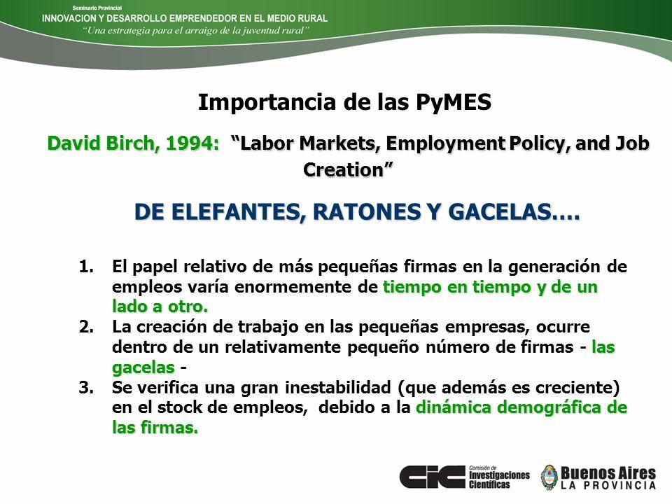 Importancia de las PyMES DE ELEFANTES, RATONES Y GACELAS….