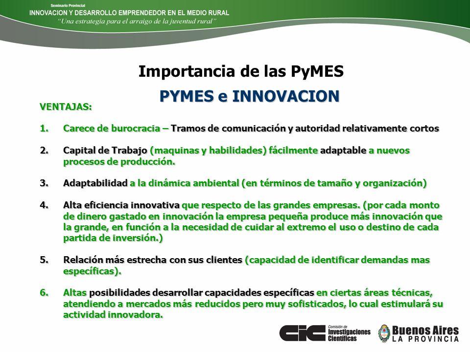Importancia de las PyMES