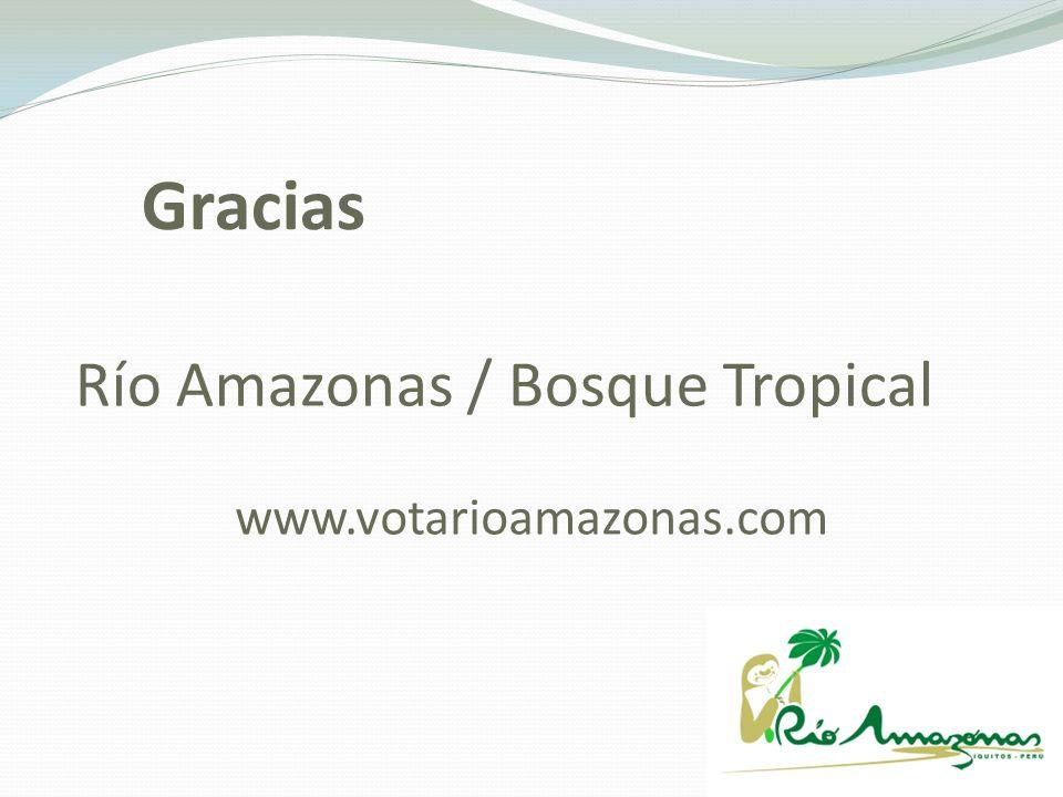 Río Amazonas / Bosque Tropical