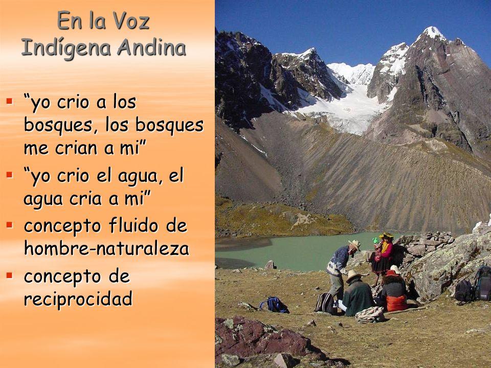 En la Voz Indígena Andina