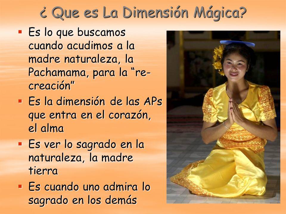 ¿ Que es La Dimensión Mágica