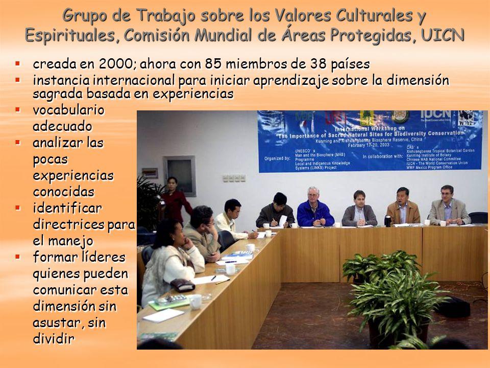 Grupo de Trabajo sobre los Valores Culturales y Espirituales, Comisión Mundial de Áreas Protegidas, UICN