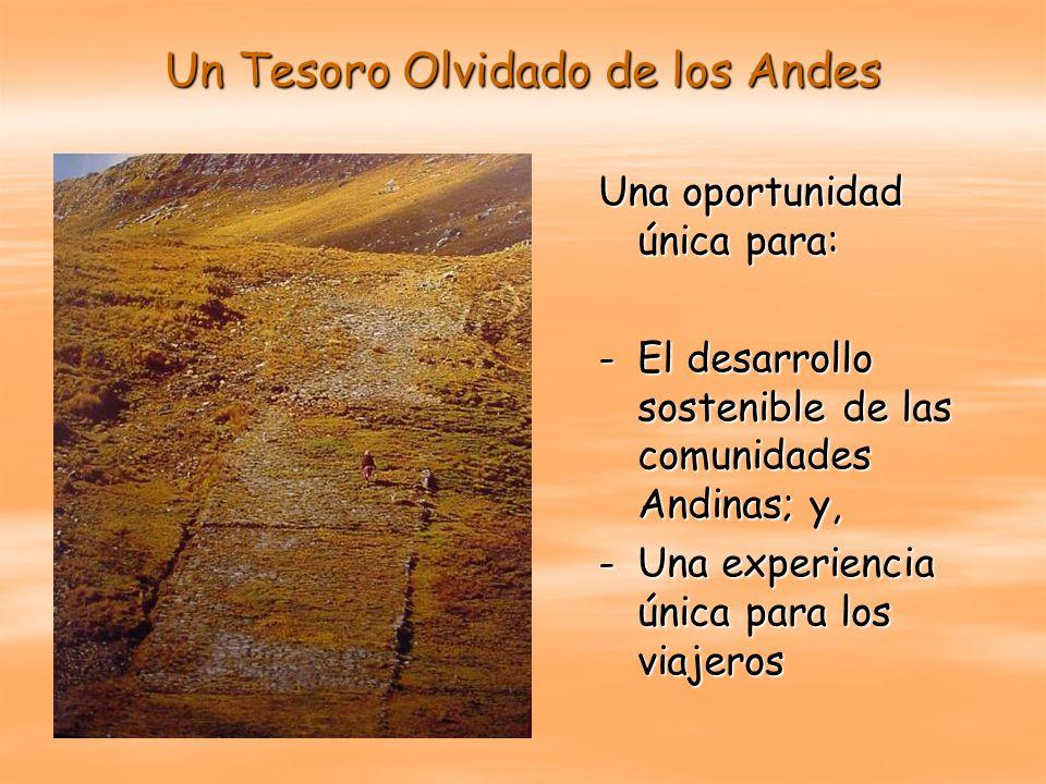 Un Tesoro Olvidado de los Andes