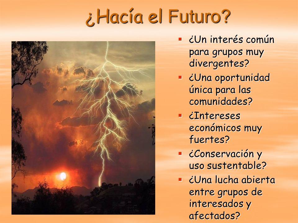 ¿Hacía el Futuro ¿Un interés común para grupos muy divergentes