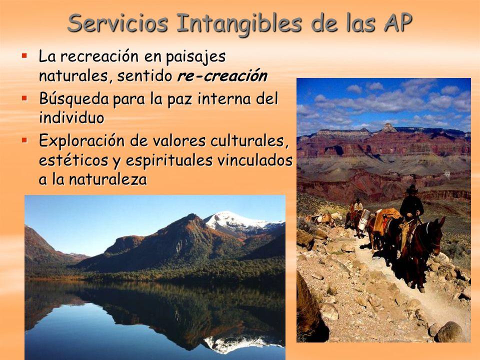 Servicios Intangibles de las AP