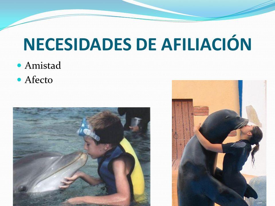 NECESIDADES DE AFILIACIÓN