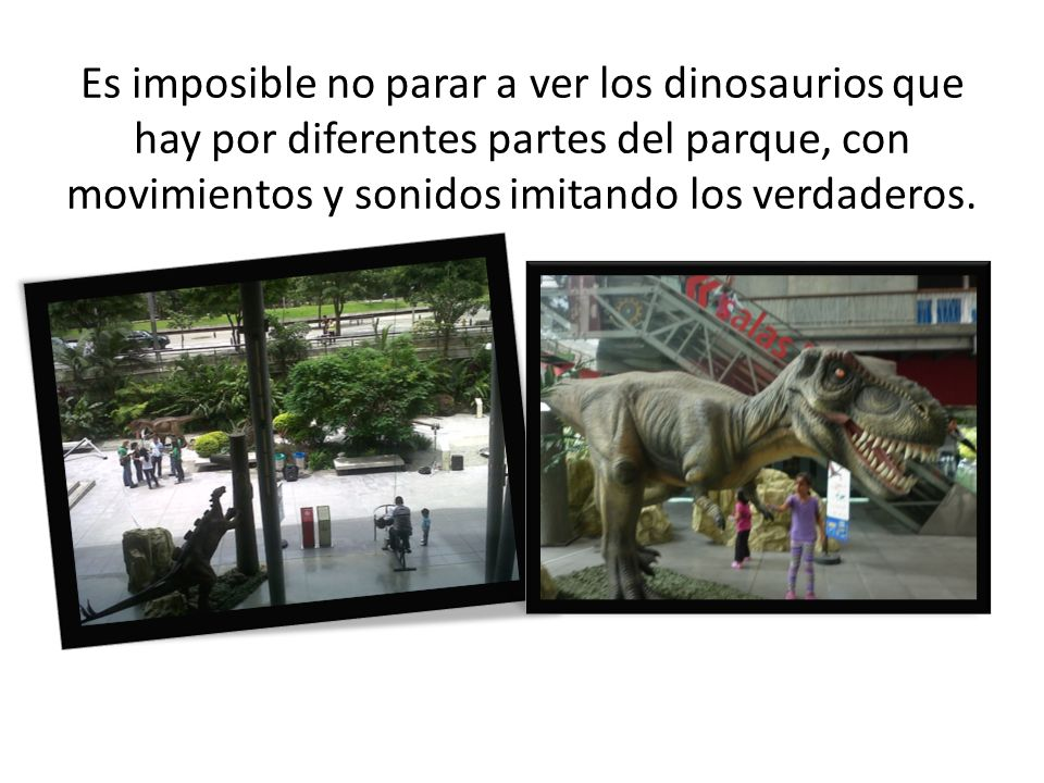 Es imposible no parar a ver los dinosaurios que hay por diferentes partes del parque, con movimientos y sonidos imitando los verdaderos.