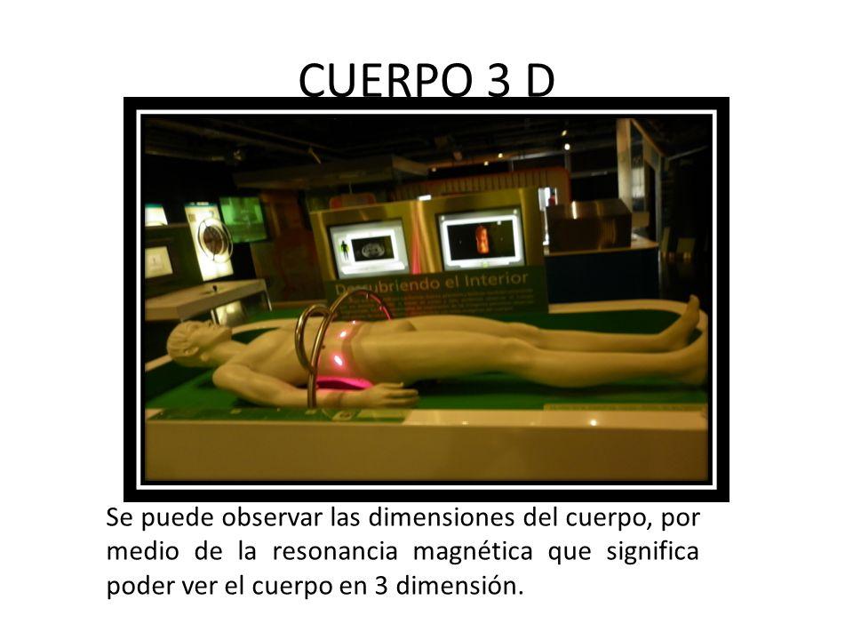 CUERPO 3 D Se puede observar las dimensiones del cuerpo, por medio de la resonancia magnética que significa poder ver el cuerpo en 3 dimensión.