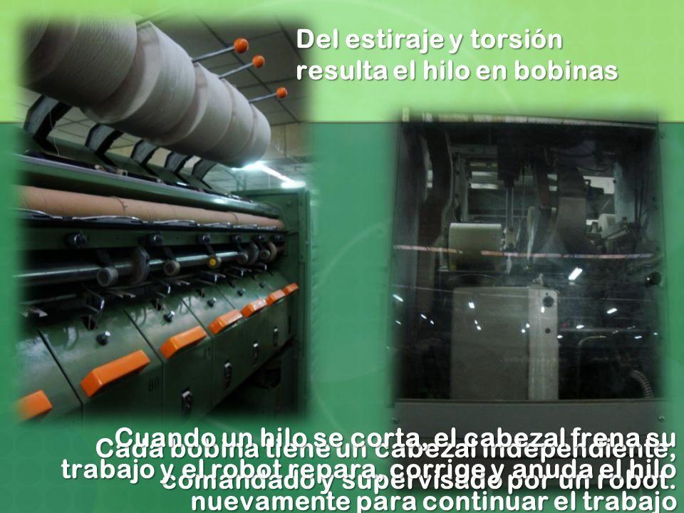 Del estiraje y torsión resulta el hilo en bobinas