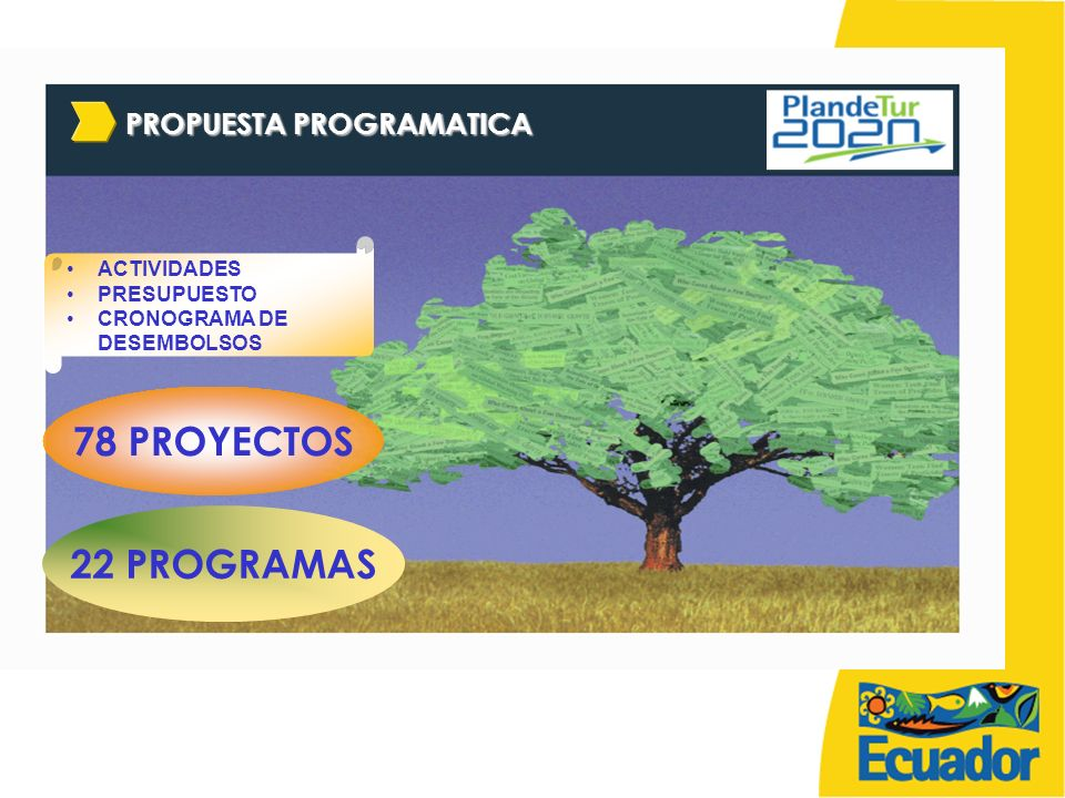 78 PROYECTOS 22 PROGRAMAS PROPUESTA PROGRAMATICA ACTIVIDADES