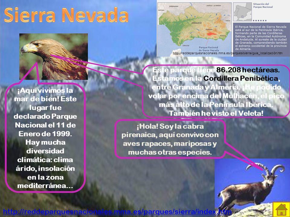 Sierra Nevada http://reddeparquesnacionales.mma.es/parques/sierra/guia_localización.htm.