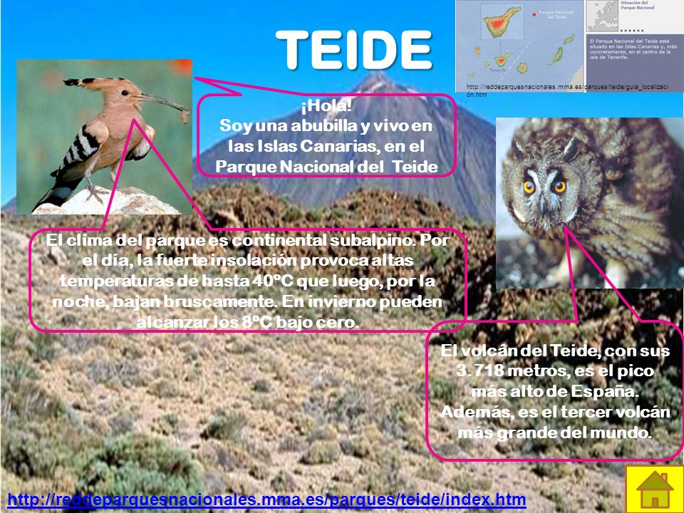 http://reddeparquesnacionales. mma. es/parques/teide/guia_localización
