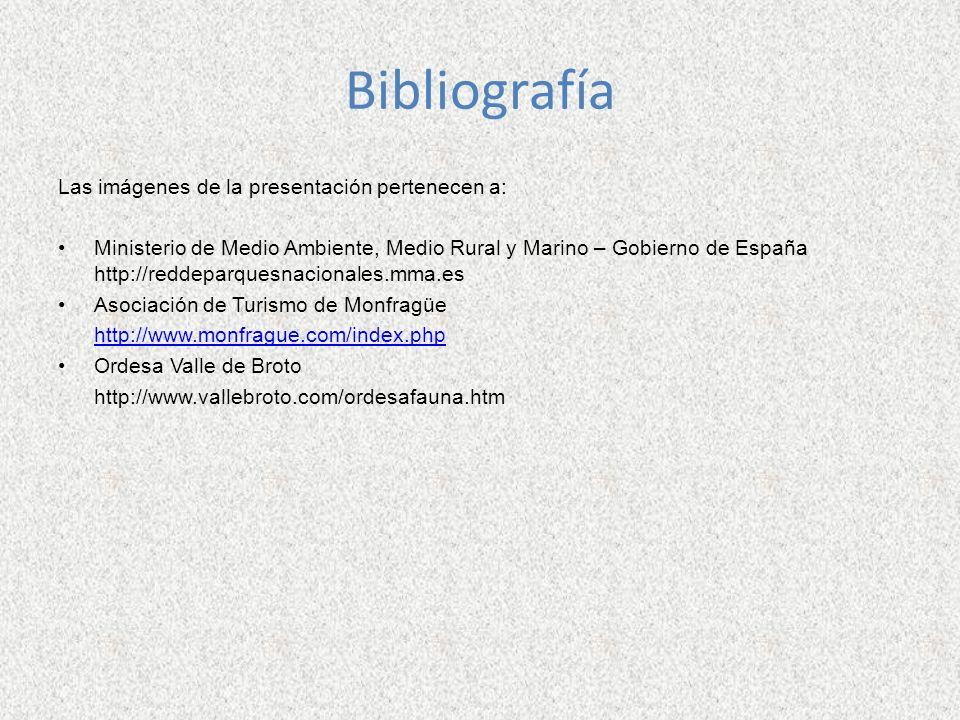 Bibliografía Las imágenes de la presentación pertenecen a: