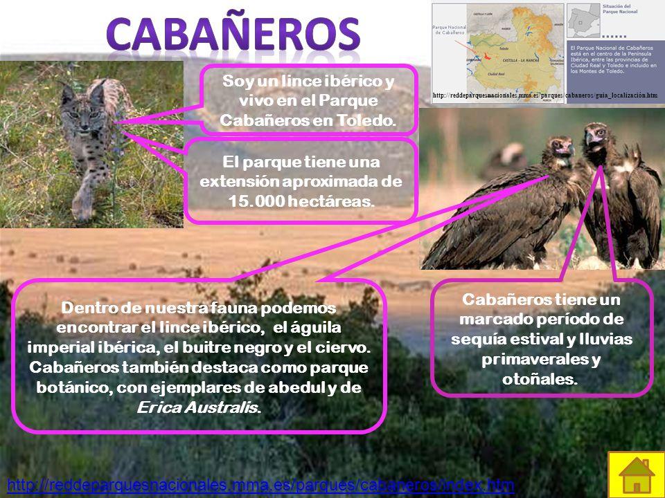 Cabañeros http://reddeparquesnacionales.mma.es/parques/cabaneros/guia_localización.htm.