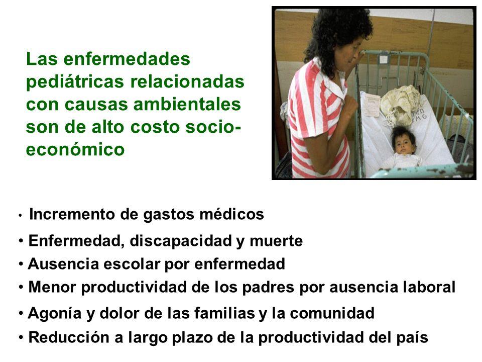 Las enfermedades pediátricas relacionadas con causas ambientales son de alto costo socio-económico