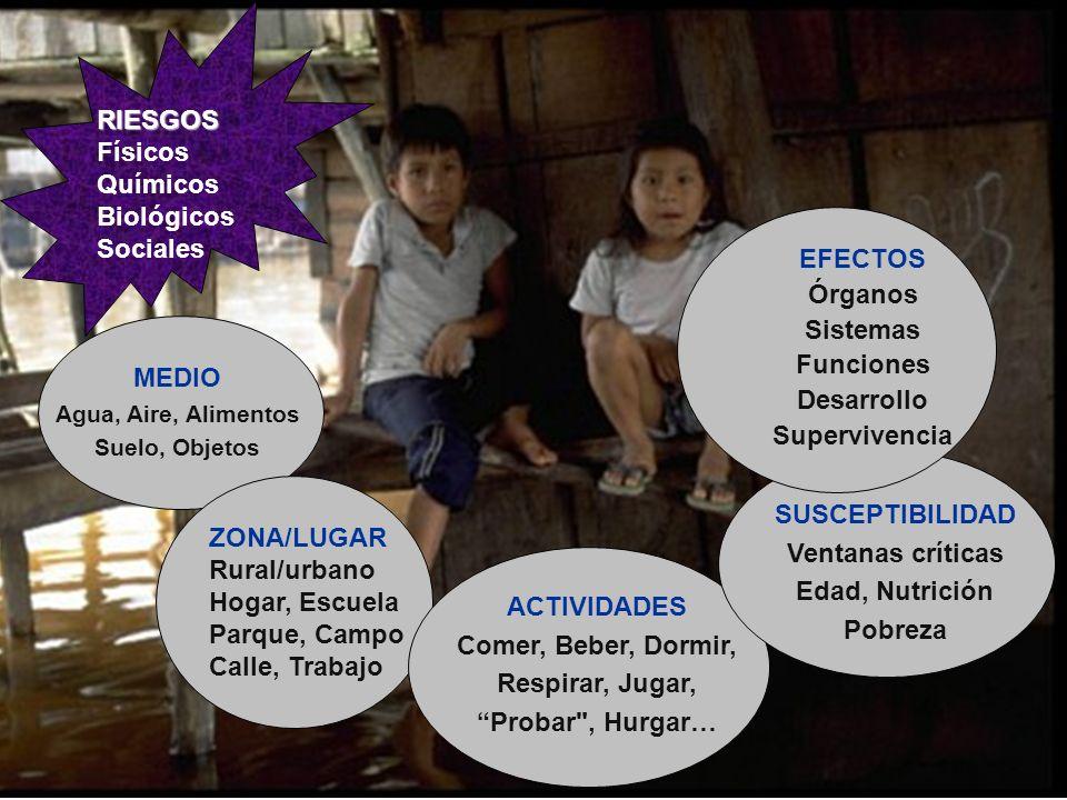 EFECTOS Órganos Sistemas Funciones RIESGOS Desarrollo Físicos