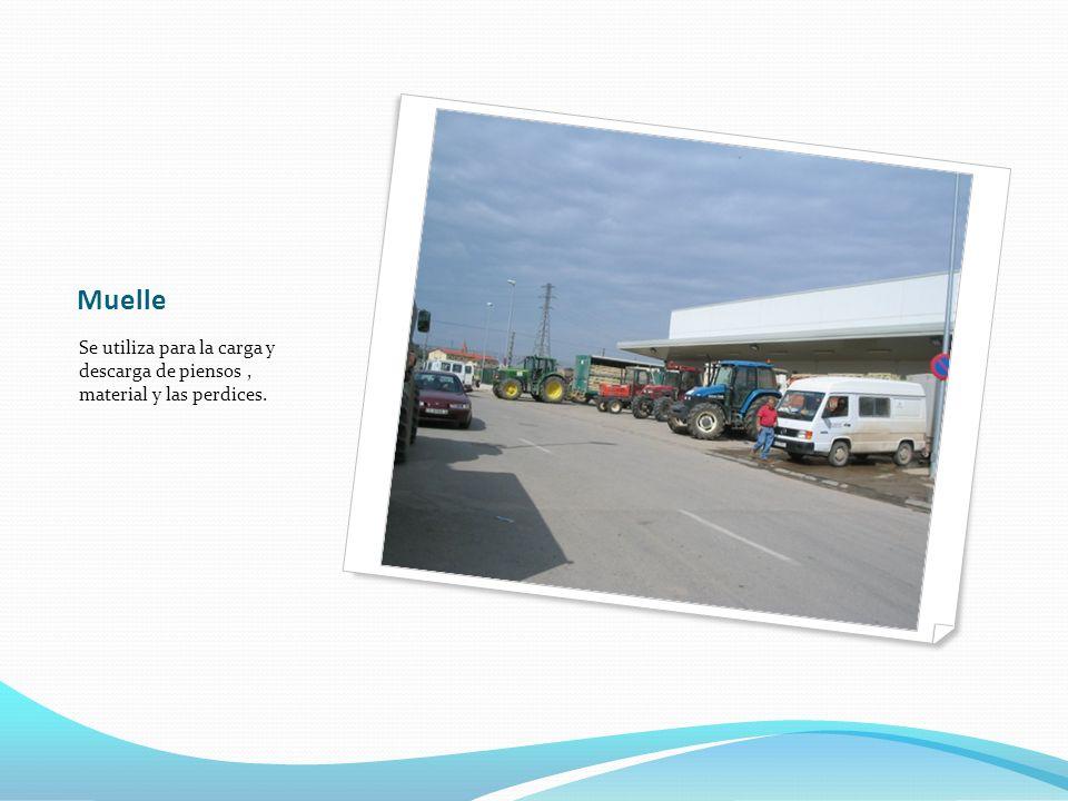 Muelle Se utiliza para la carga y descarga de piensos , material y las perdices.