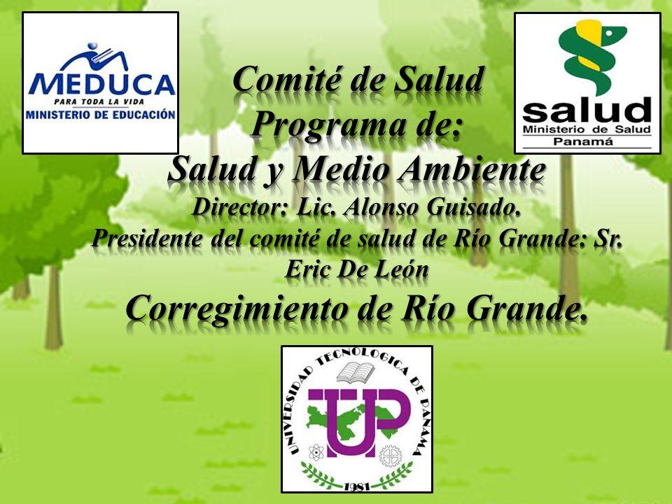 Comité de Salud Programa de: Salud y Medio Ambiente Director: Lic