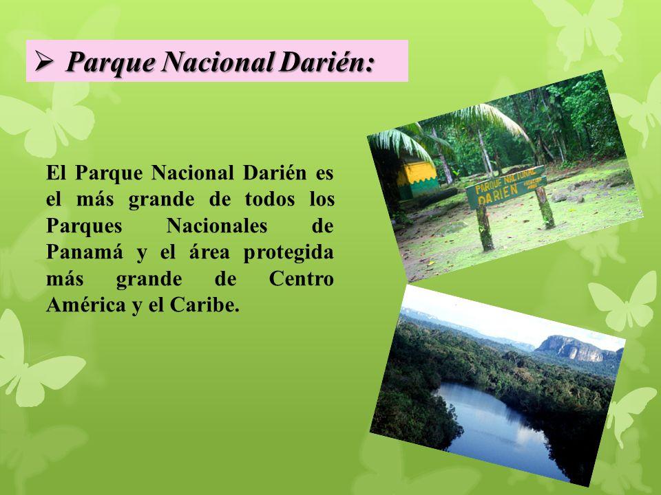 Parque Nacional Darién:
