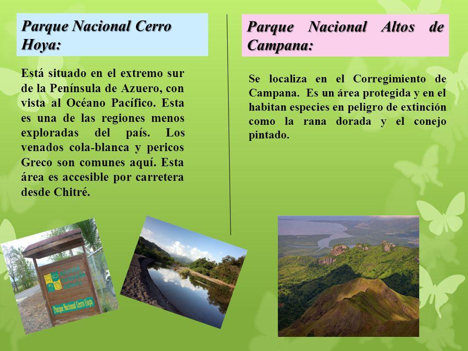 Parque Nacional Cerro Hoya: Parque Nacional Altos de Campana: