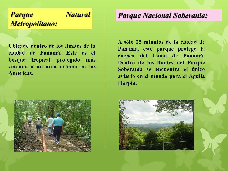 Parque Natural Metropolitano: Parque Nacional Soberanía: