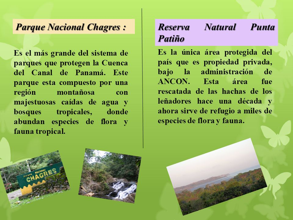 Parque Nacional Chagres : Reserva Natural Punta Patiño