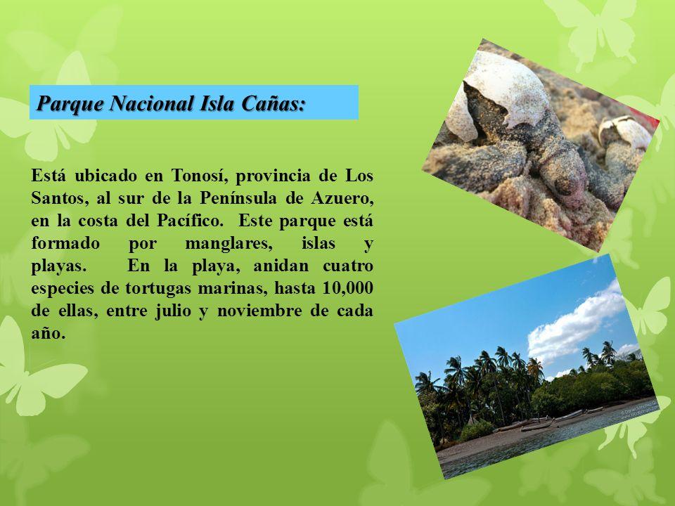 Parque Nacional Isla Cañas:
