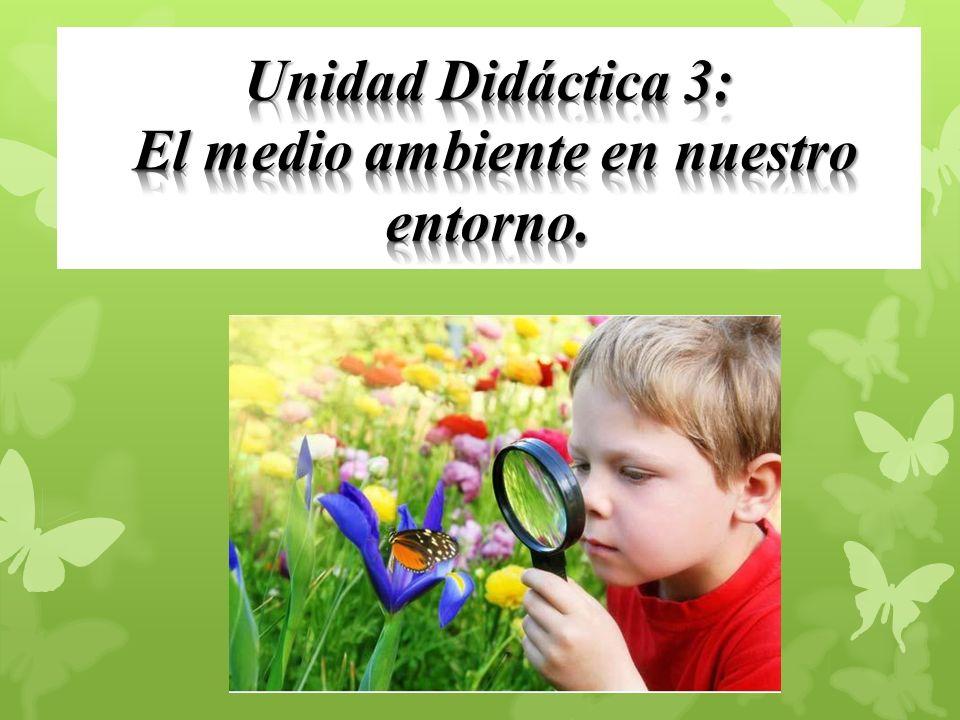Unidad Didáctica 3: El medio ambiente en nuestro entorno.