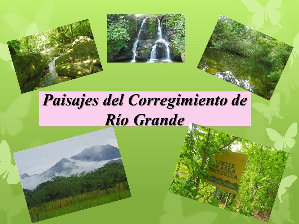 Paisajes del Corregimiento de Río Grande