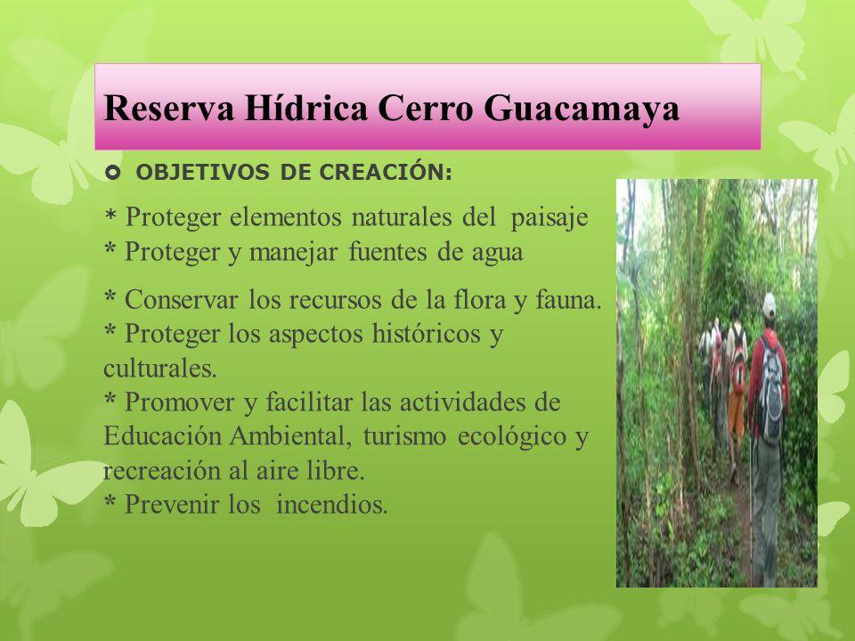 Reserva Hídrica Cerro Guacamaya