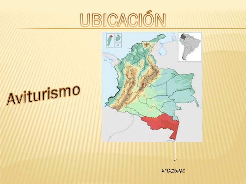 UBICACIÓN Aviturismo AMAZONAS