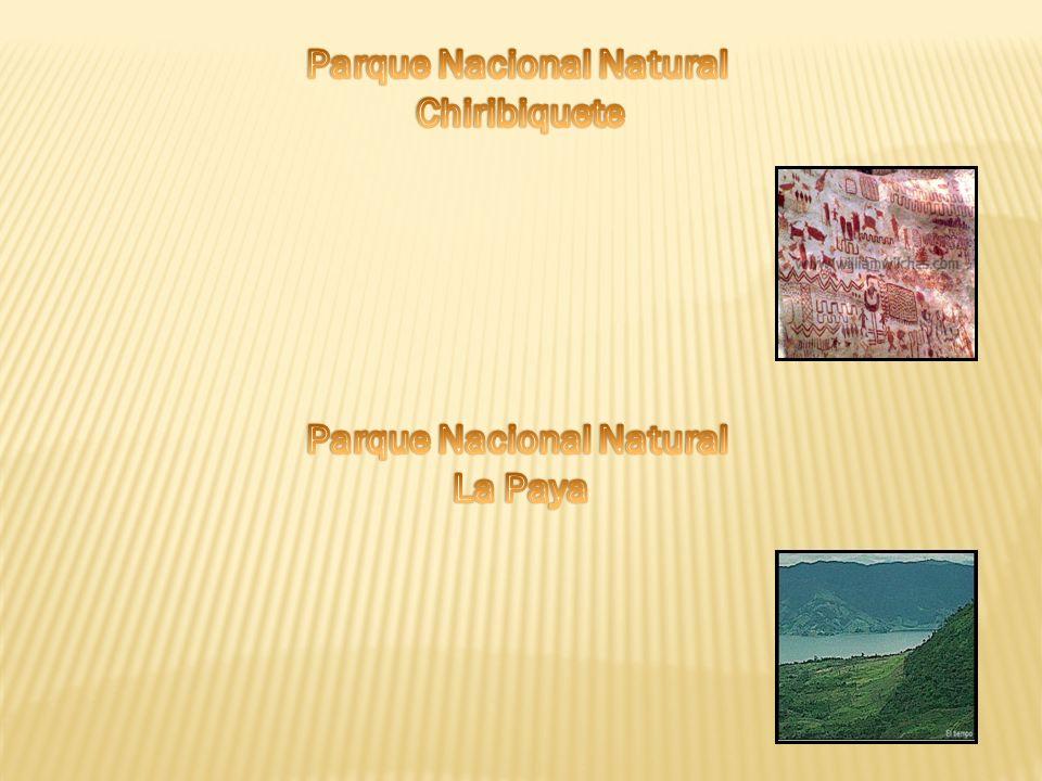 Parque Nacional Natural Parque Nacional Natural