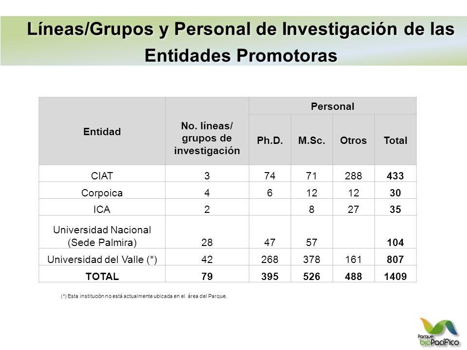 Líneas/Grupos y Personal de Investigación de las Entidades Promotoras