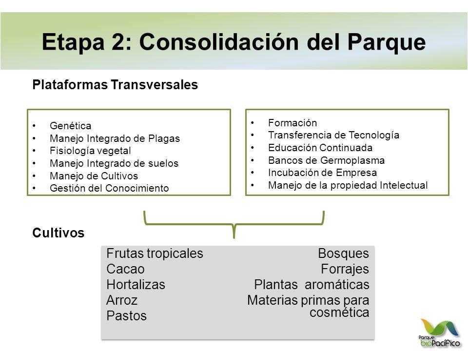 Etapa 2: Consolidación del Parque