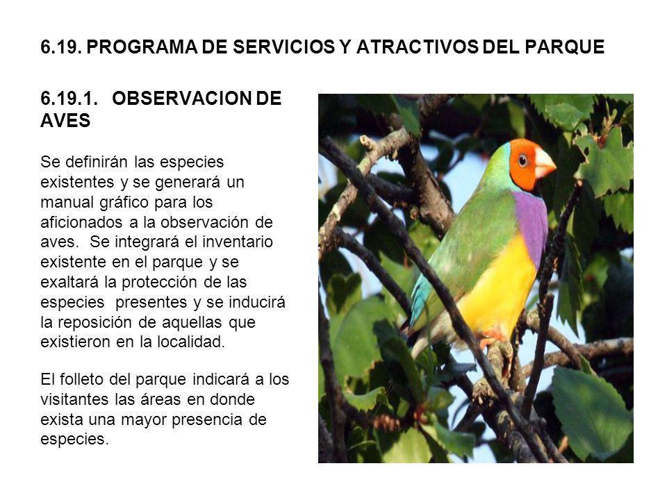 6.19. PROGRAMA DE SERVICIOS Y ATRACTIVOS DEL PARQUE