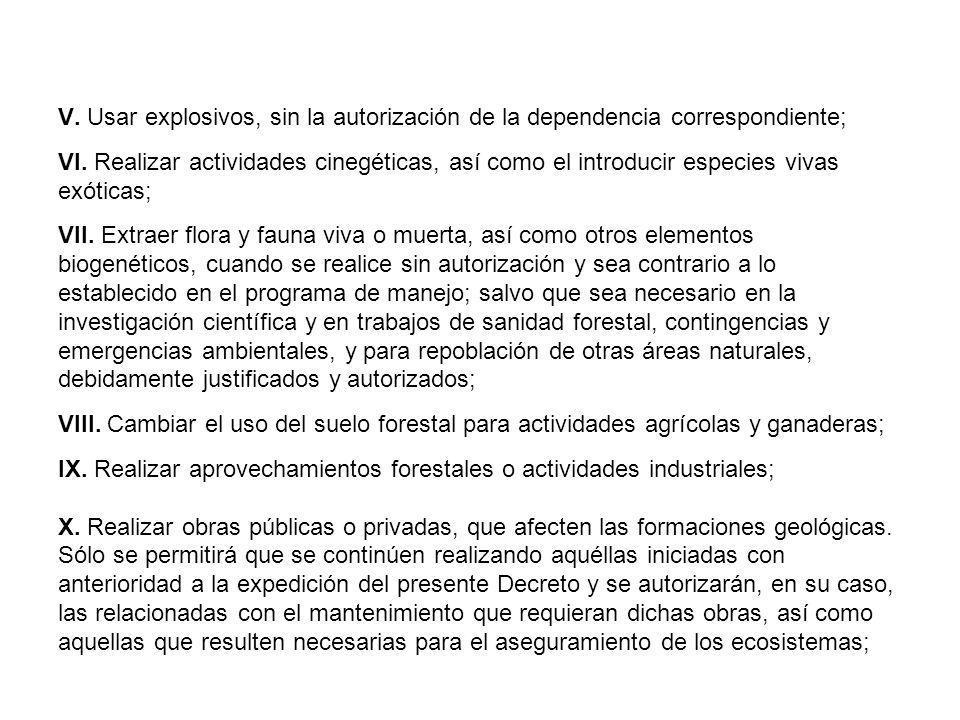 V. Usar explosivos, sin la autorización de la dependencia correspondiente; VI.